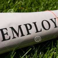 ಉದ್ಯೋಗ ಮಾಹಿತಿ - Employment News